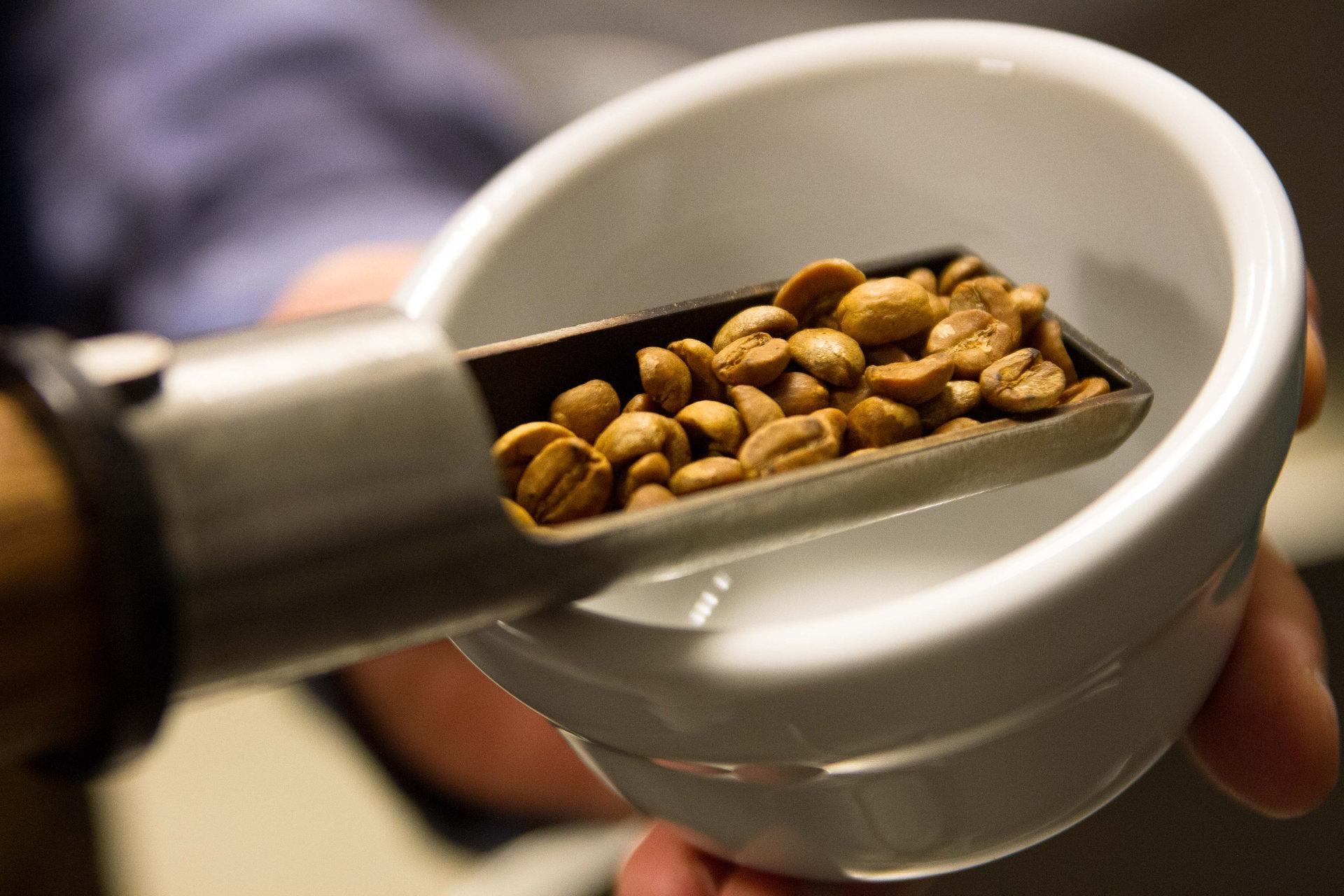 Nyrostade kaffebönor hälls ner i en kopp. Fotograf: Oscar Helgestrand/Pressbild